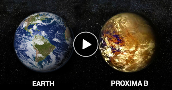 new-discover-planet